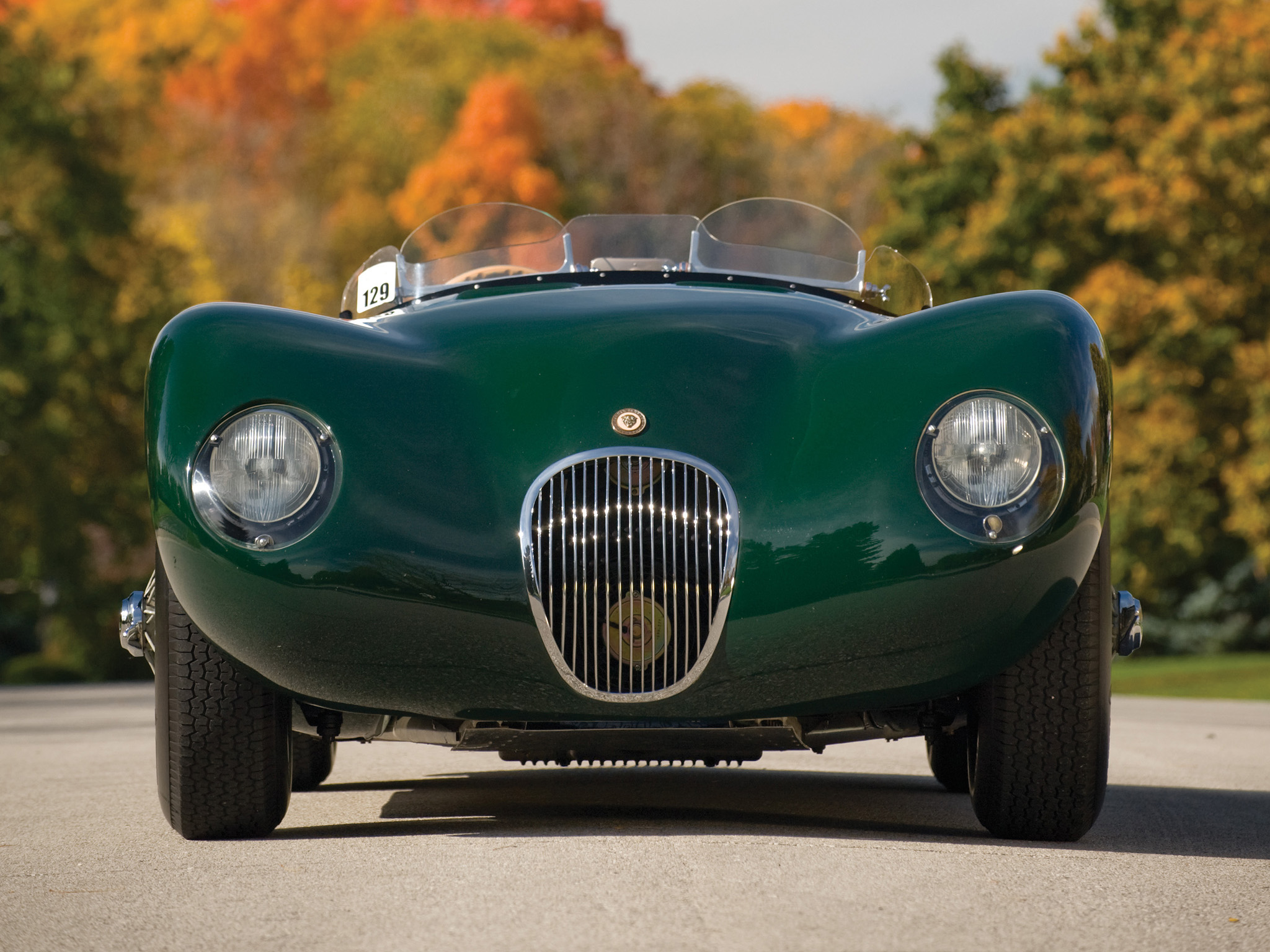 Jaguar C-Type: 8 фото
