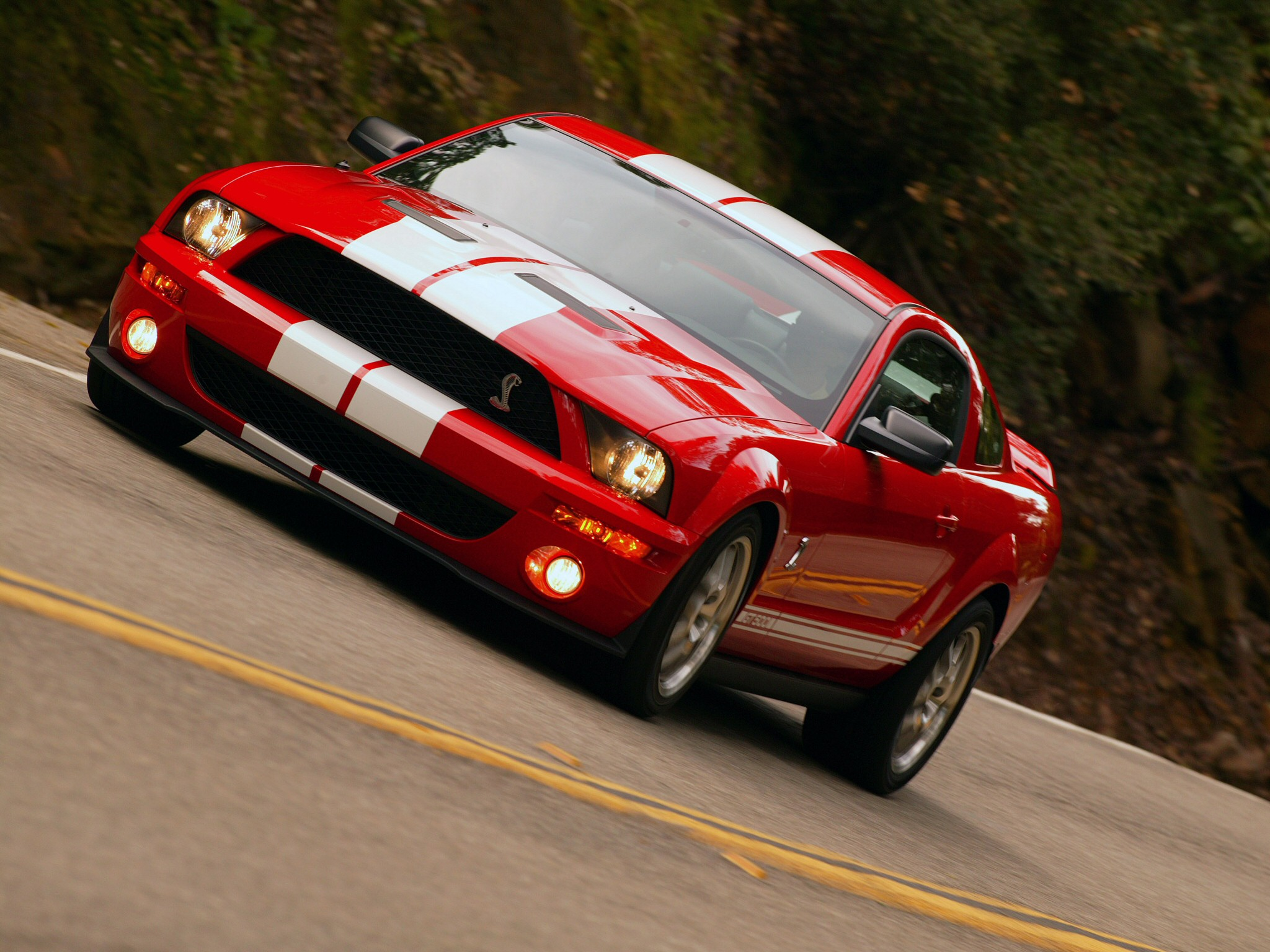 Ford Shelby GT 500: 06 фото