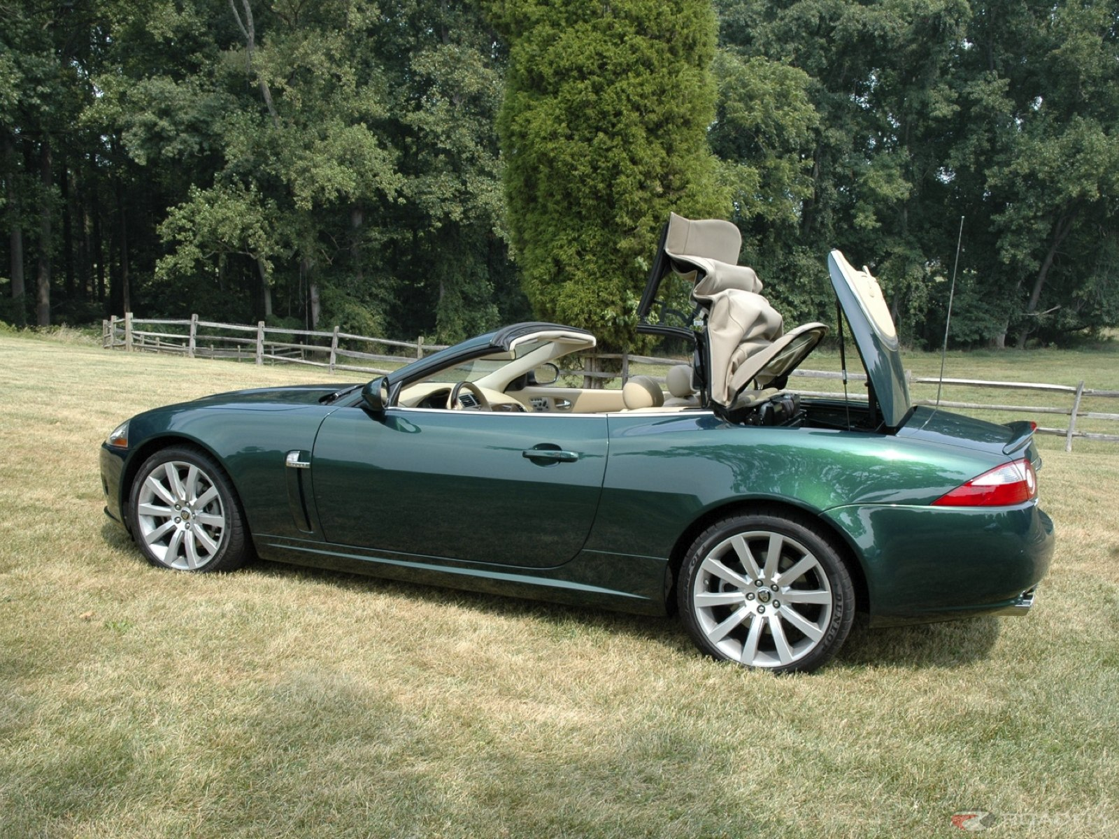 Jaguar XK Convertible: 3 фото